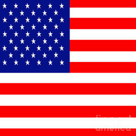 Wingsdomain Art and Photography - American Flag . Square