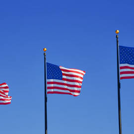 Christine Till - American Flags - Navy Pier Chicago