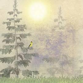 David Dehner - American Goldfinch Morning Mist