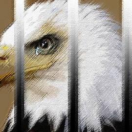 George Pedro - American Heroes Unjustly Behind Bars