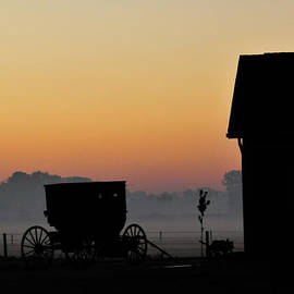 David Arment - Amish Buggy before Dawn