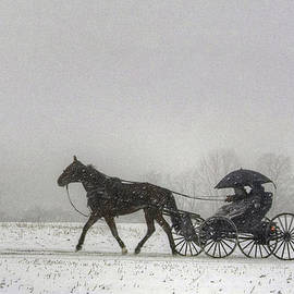 Gene Walls - Amish Buggy Ride In The Snow