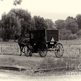 David Arment - Amish Buggy Sept 2013