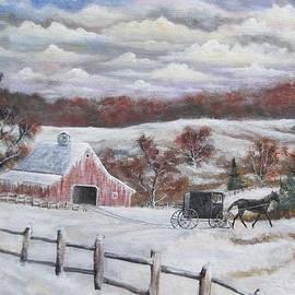 Brian Mickey - Amish Buggy Ride