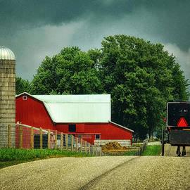 Tricia Marchlik - Amish Farms