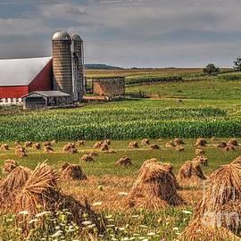 Krista Hott - Amish Haystacks
