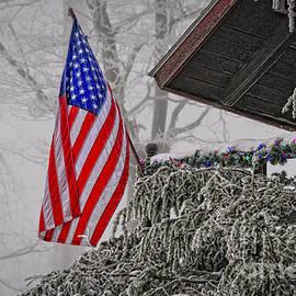 Lois Bryan - An American Christmas