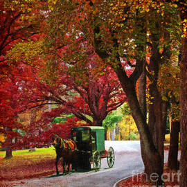 Lianne Schneider - An Amish Autumn Ride