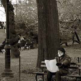 RicardMN Photography - An artist in Central Park