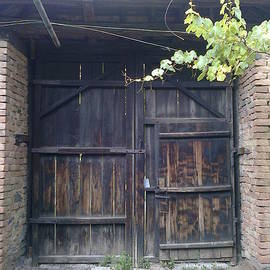 Zornitsa Tsvetkova - An old gate