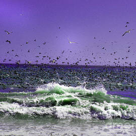 Dawn  De Vos - Migration