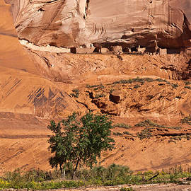 Bob and Nadine Johnston - Ancient Anasazi Pueblo Canyon DeChelly