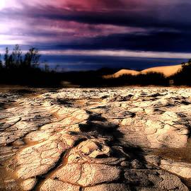 Barbara D Richards - Ancient Mud