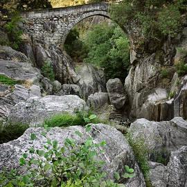 Carlos Caetano - Ancient Romanic Bridge
