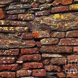 Carlos Caetano - Ancient Wall