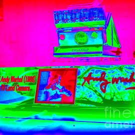 Ed Weidman - Andy Warhols Polaroid
