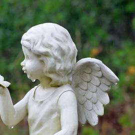 Michele Napier-Berg - Angel Crying in the Rain