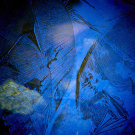 Jouko Lehto - Angel wings