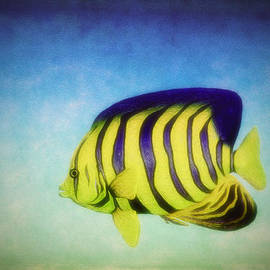 Ramon Martinez - Angelfish