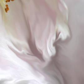 The Art Of Marilyn Ridoutt-Greene - Angel