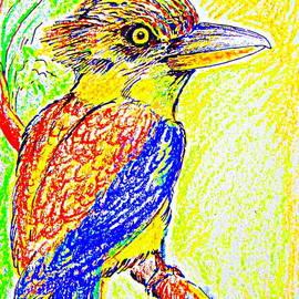 Roberto Gagliardi - Angry Kookaburra not really