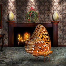 Mike Savad - Animal - The Butterfly
