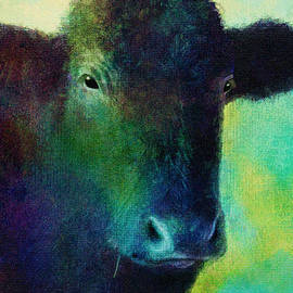 Ann Powell - animals - cows- Black Cow