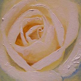 Anne Gardner - Anniversary rose
