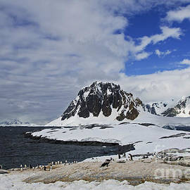 Nina Stavlund - Antarctic Wilderness...