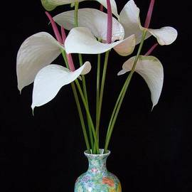 Mary Deal - Anthurium Bouquet