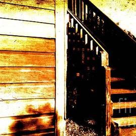 Denise Tomasura - Antique Barn