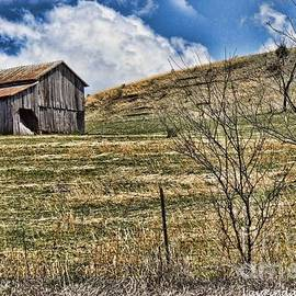 Laurinda Bowling - Appalachian Barn