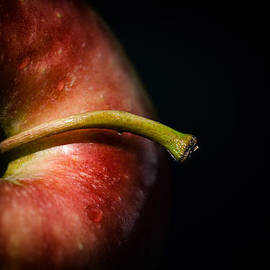 Karol  Livote - Apple A Day