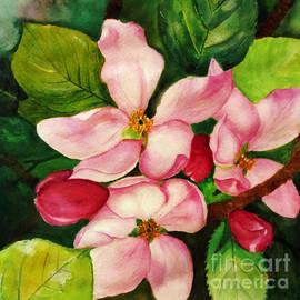 Anjali Vaidya - Apple Blossom