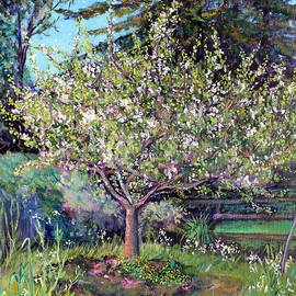 Asha Carolyn Young - Apple Blossoms and Spring Flowers