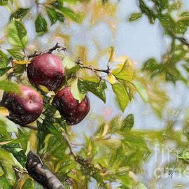Lois Bryan - Apple Pickin
