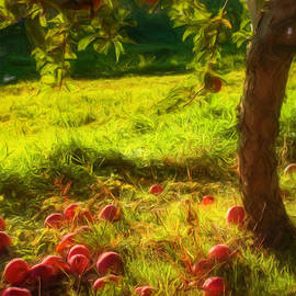 Joann Vitali - Apple Picking