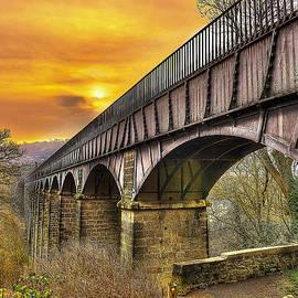 Darren Wilkes - Aquaduct
