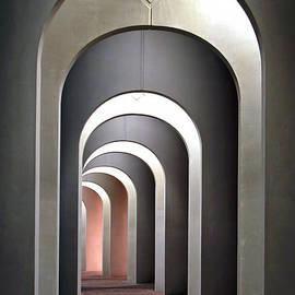 Marcia Colelli - Arches