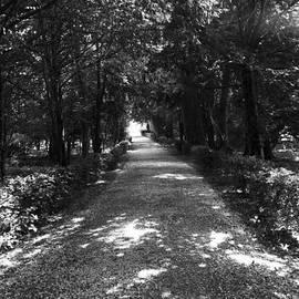 Maj Seda - Archway Path Chantilly