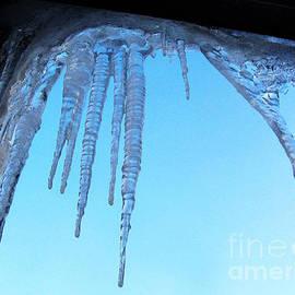Tina M Wenger - Arctic Polar Vortex Icicle 2014