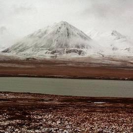 David Broome - Arctic Tundra Autumn Snow