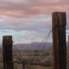 Valerie Loop - Arizona Fence