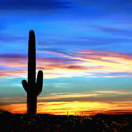 Bob and Nadine Johnston - Arizona Sunset Saguaro National Park