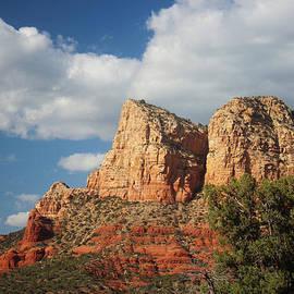 Valerie Loop - Arizona