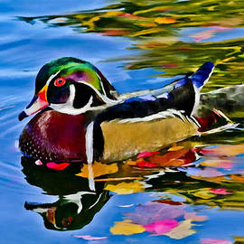Bob and Nadine Johnston - Arizona Wood Duck