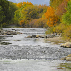 Ann Powell - Arkansas River at Salida Colorado