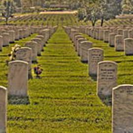 Jonathan Harper - Arlington National Cemetery