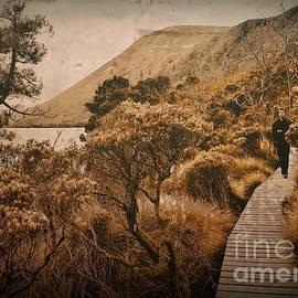 Tim Richards - Around Dove Lake V