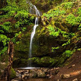 Mary Sheft - Arroyo de San Jose Waterfall